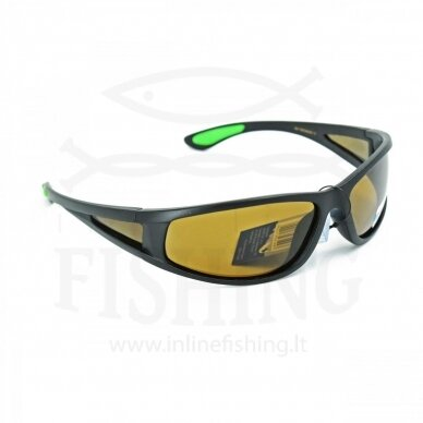 Polerizuoti akiniai Jaxon, X44AM