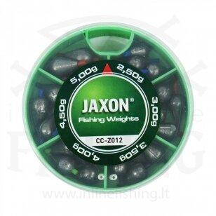 Slankiojančių svarelių komplektas Jaxon Nr. 12
